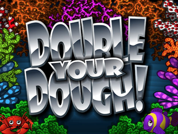 Double Your Dough